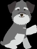 dog-1-500